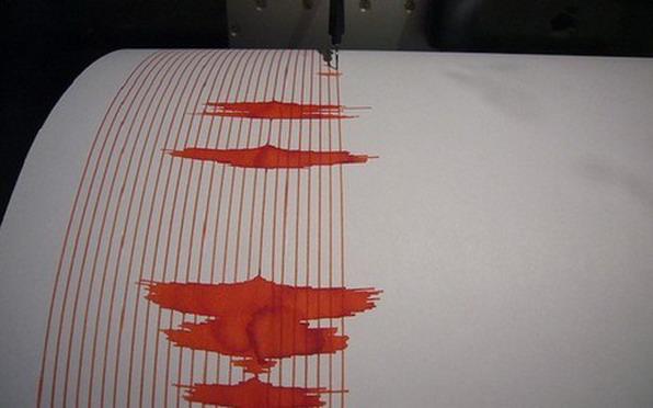 seismograph 20